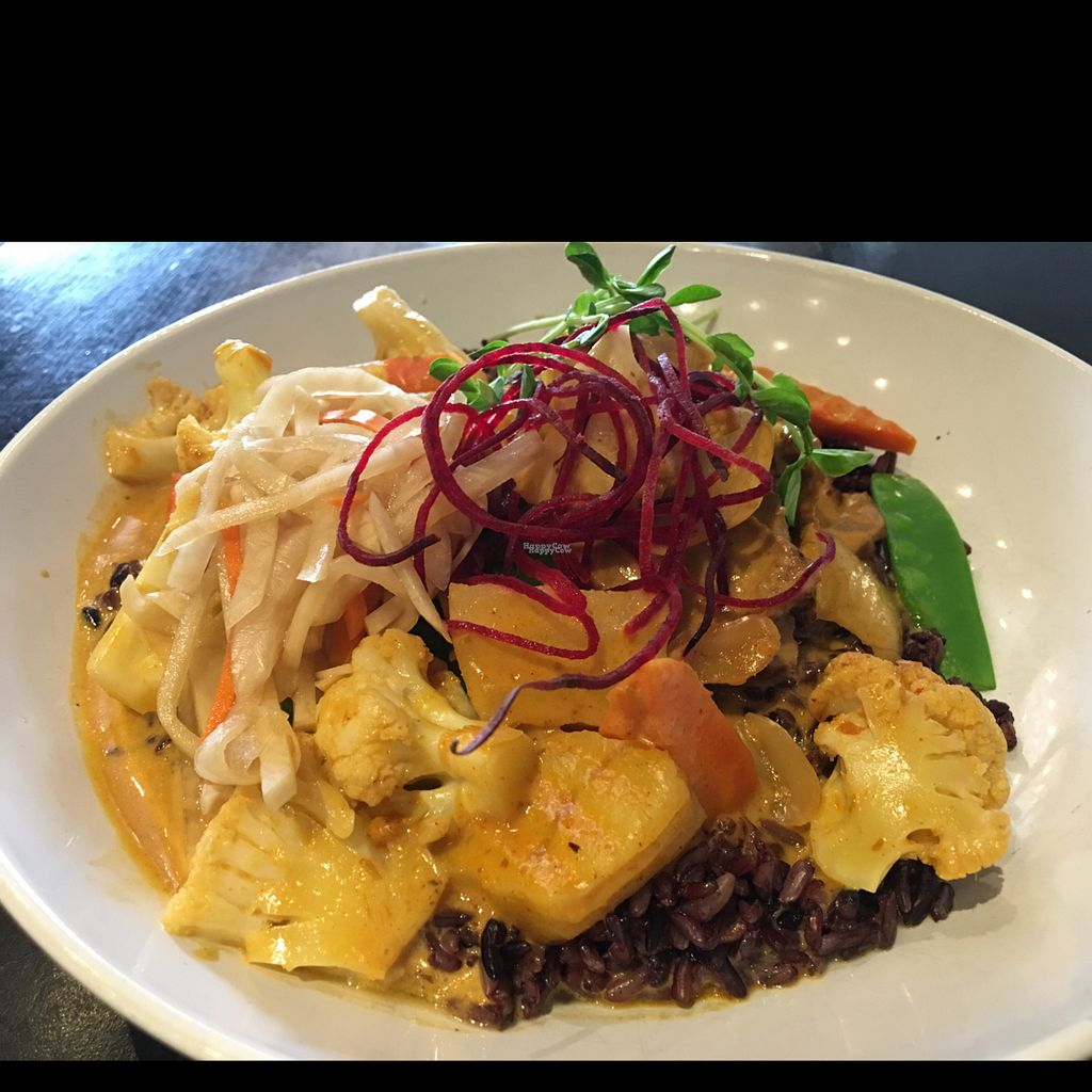 """Photo of VeStation Urban Organic Kitchen  by <a href=""""/members/profile/Ltldove"""">Ltldove</a> <br/>Massamon Curry Dish.  Super delish!! <br/> September 19, 2016  - <a href='/contact/abuse/image/30585/176847'>Report</a>"""