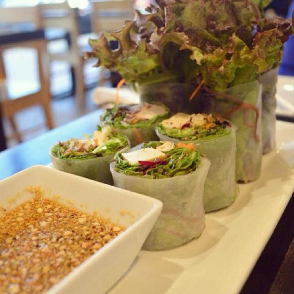 """Photo of VeStation Urban Organic Kitchen  by <a href=""""/members/profile/AlessandraTaryn"""">AlessandraTaryn</a> <br/>Buddha Rolls <br/> November 7, 2014  - <a href='/contact/abuse/image/30585/84925'>Report</a>"""