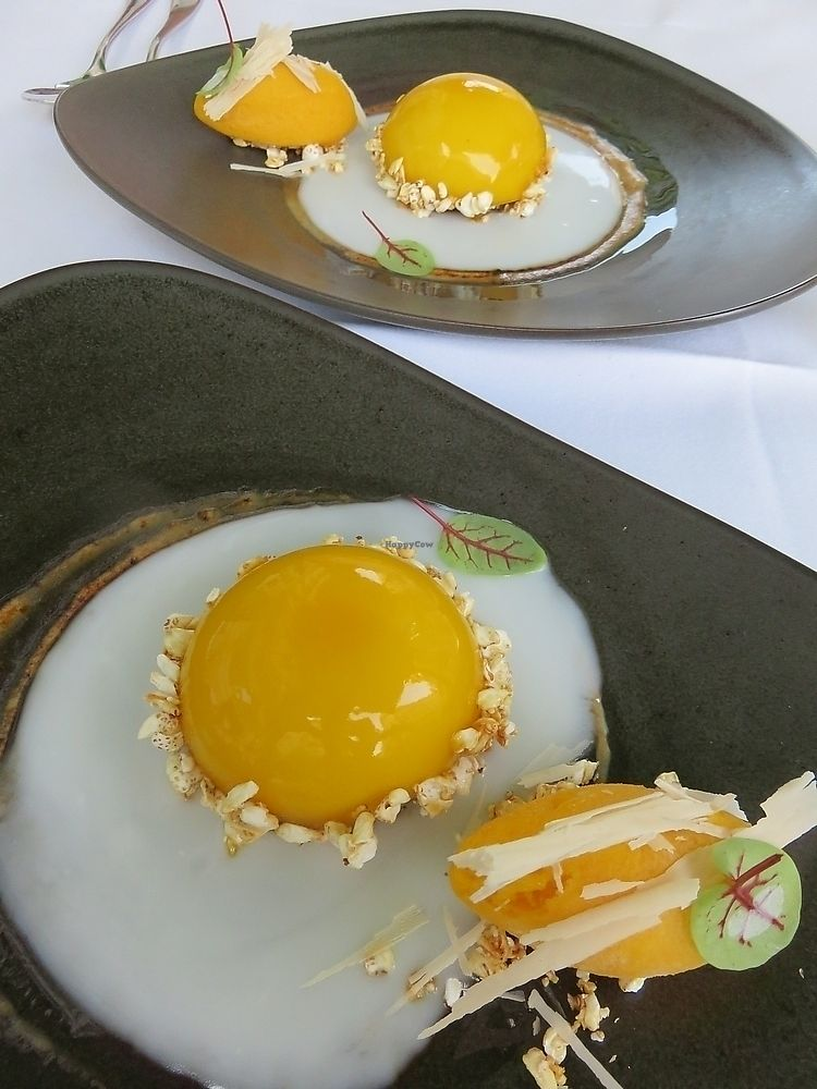 """Photo of TIAN Restaurant  by <a href=""""/members/profile/TrudiBruges"""">TrudiBruges</a> <br/>dessert, (not an egg!)  <br/> December 3, 2017  - <a href='/contact/abuse/image/30641/331823'>Report</a>"""