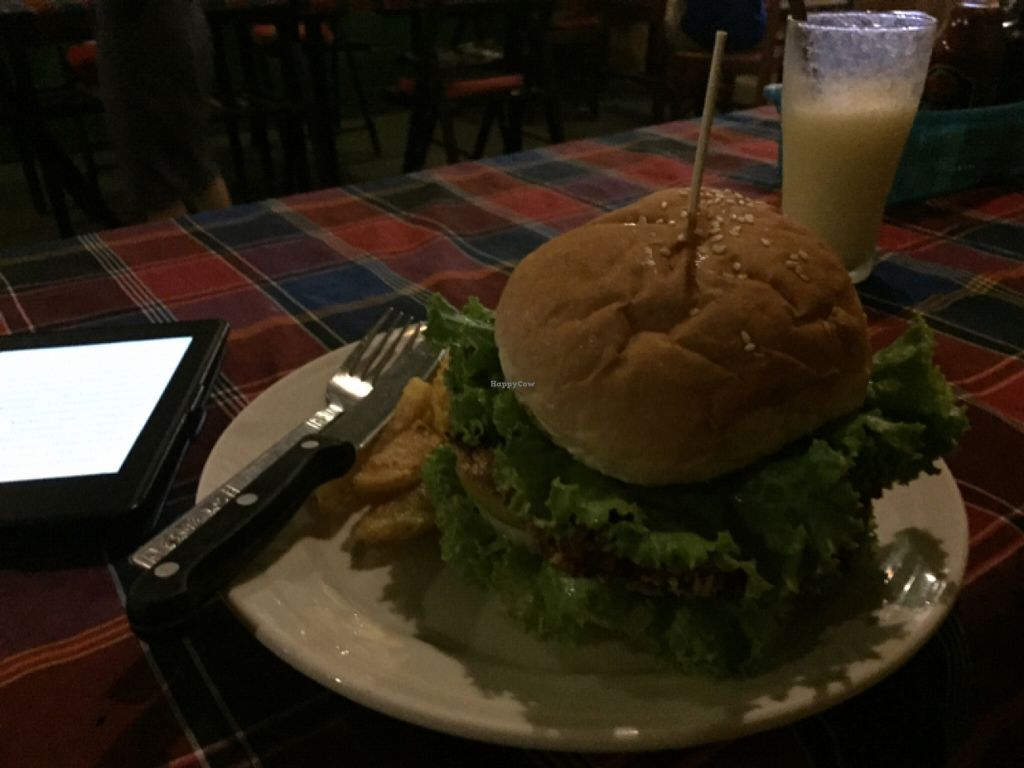 """Photo of Veggie Tables  by <a href=""""/members/profile/Lucas_plantbased"""">Lucas_plantbased</a> <br/>pumpkin burger <br/> May 16, 2016  - <a href='/contact/abuse/image/30679/149374'>Report</a>"""