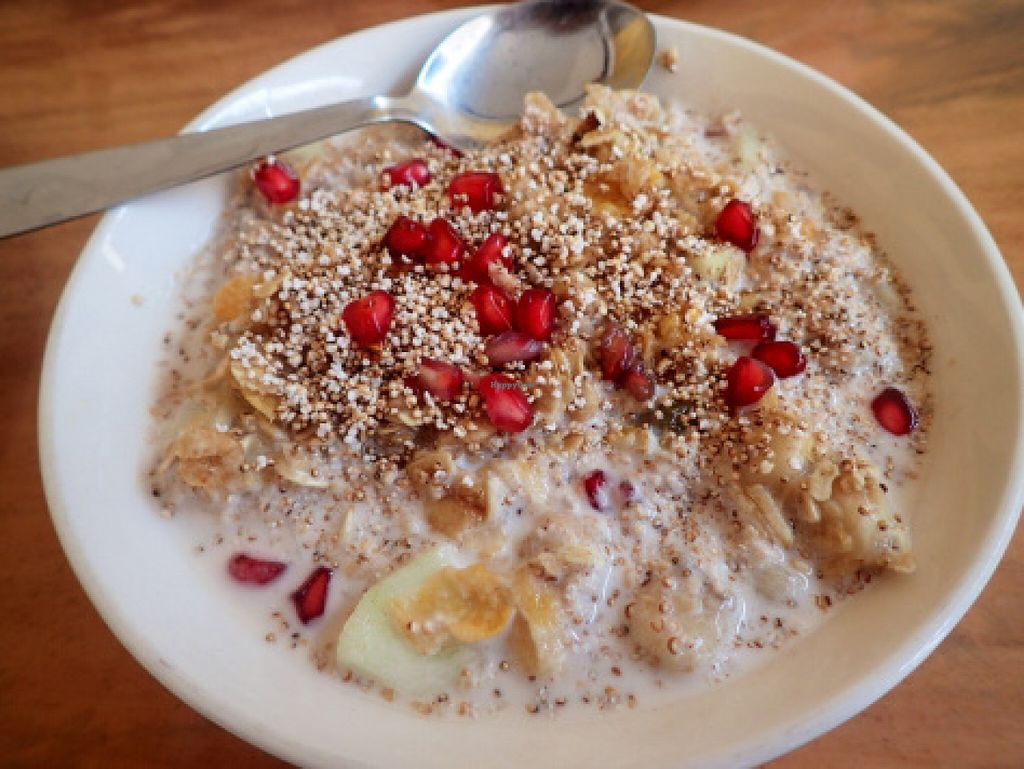 """Photo of Millets of Mewar  by <a href=""""/members/profile/TrudiH"""">TrudiH</a> <br/>millet muesli with coconut milk  <br/> June 20, 2016  - <a href='/contact/abuse/image/30697/154942'>Report</a>"""