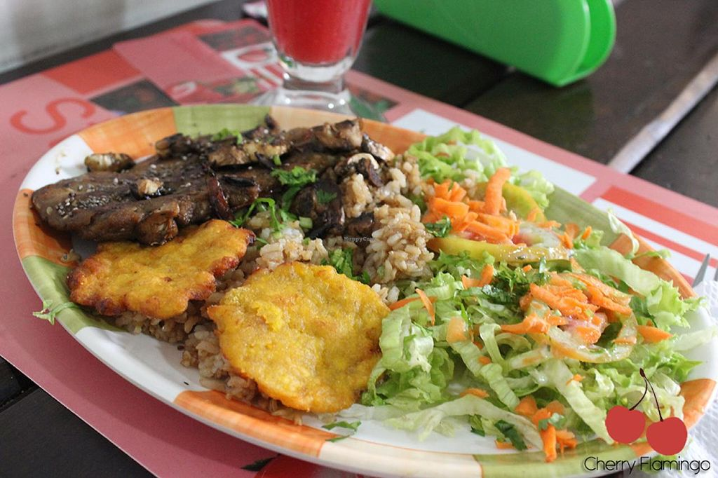 """Photo of Delicias al Natural  by <a href=""""/members/profile/CherryFlamingo"""">CherryFlamingo</a> <br/>menu <br/> July 14, 2015  - <a href='/contact/abuse/image/30746/109417'>Report</a>"""