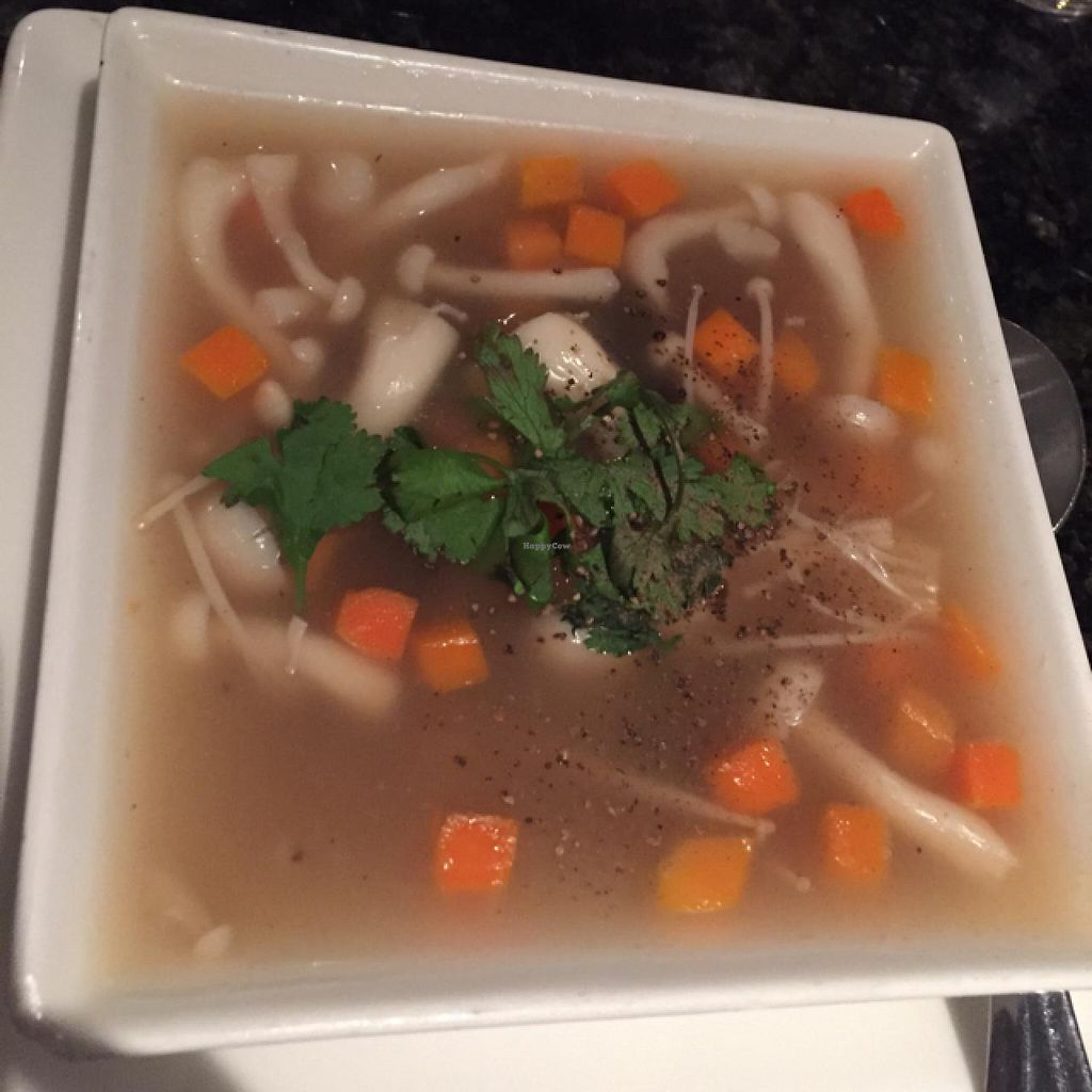 """Photo of The Tropical Bar and Restaurant  by <a href=""""/members/profile/Mrs_Rowe"""">Mrs_Rowe</a> <br/>3 mushroom soup <br/> March 10, 2015  - <a href='/contact/abuse/image/30756/95417'>Report</a>"""