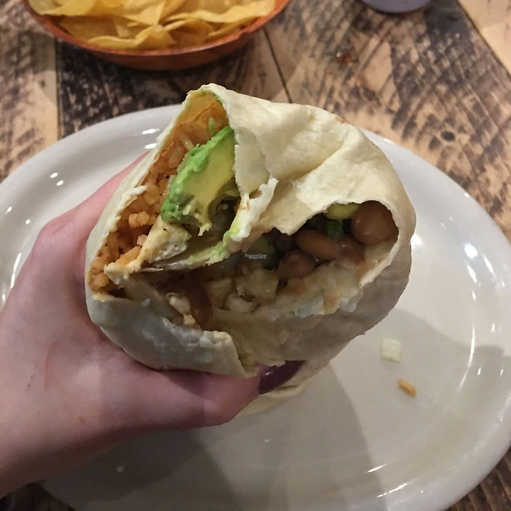"""Photo of Howling Wolf Taqueria  by <a href=""""/members/profile/Halfmoon91"""">Halfmoon91</a> <br/>vegan burrito <br/> January 20, 2017  - <a href='/contact/abuse/image/30759/213690'>Report</a>"""