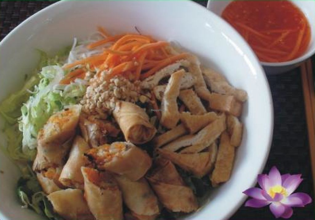 """Photo of Fina's Vegetarian Cafe  by <a href=""""/members/profile/hien_melb"""">hien_melb</a> <br/> June 11, 2012  - <a href='/contact/abuse/image/30807/261892'>Report</a>"""