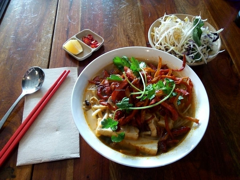 """Photo of Fina's Vegetarian Cafe  by <a href=""""/members/profile/Tofulicious"""">Tofulicious</a> <br/>Bamboo Noodle Soup <br/> March 30, 2018  - <a href='/contact/abuse/image/30807/378096'>Report</a>"""