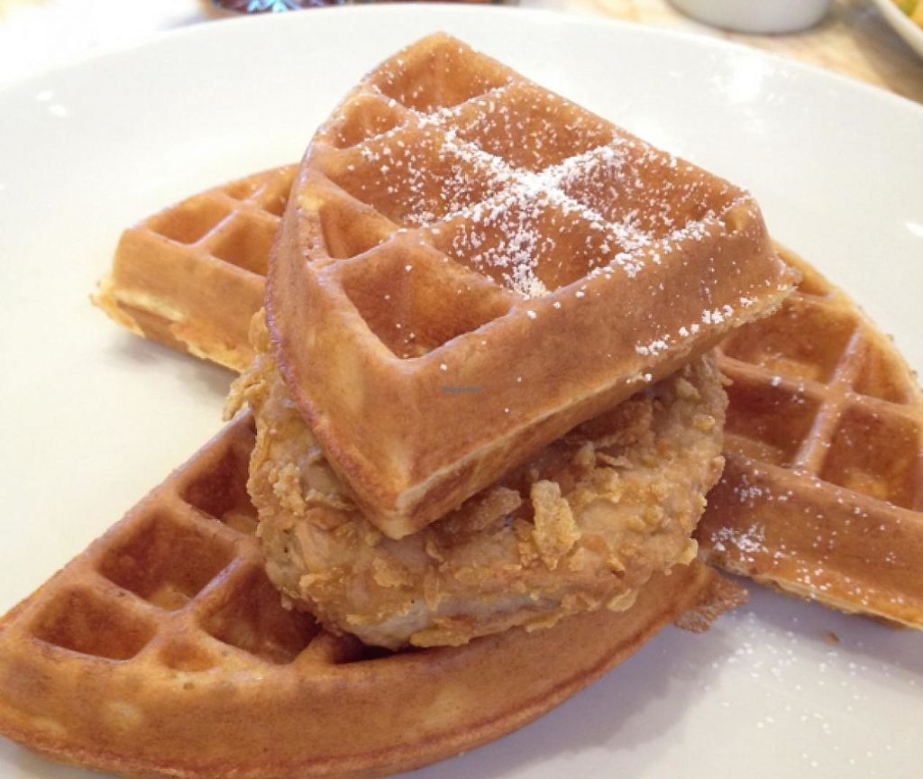 """Photo of Wynn Hotel - Terrace Pointe Cafe  by <a href=""""/members/profile/Tigra220"""">Tigra220</a> <br/>vegan Chicken n' Waffles <br/> June 21, 2015  - <a href='/contact/abuse/image/30823/207716'>Report</a>"""