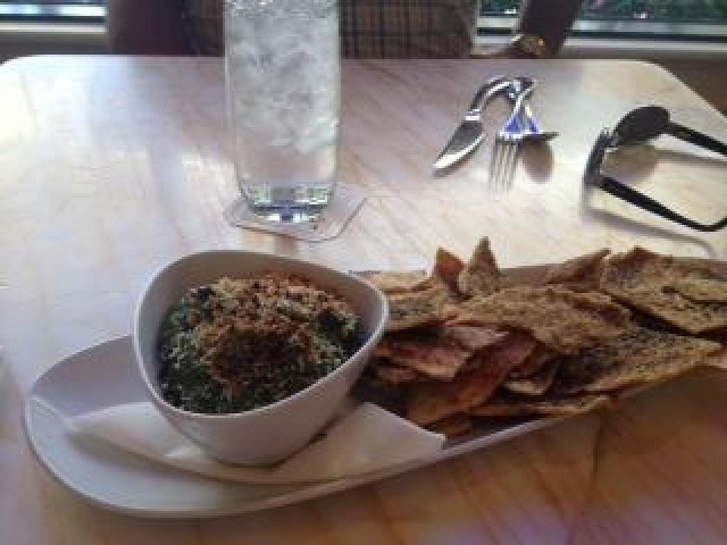 """Photo of Wynn Hotel - Terrace Pointe Cafe  by <a href=""""/members/profile/Lbatton"""">Lbatton</a> <br/>Spinach Artichoke Dip <br/> June 24, 2014  - <a href='/contact/abuse/image/30823/72658'>Report</a>"""