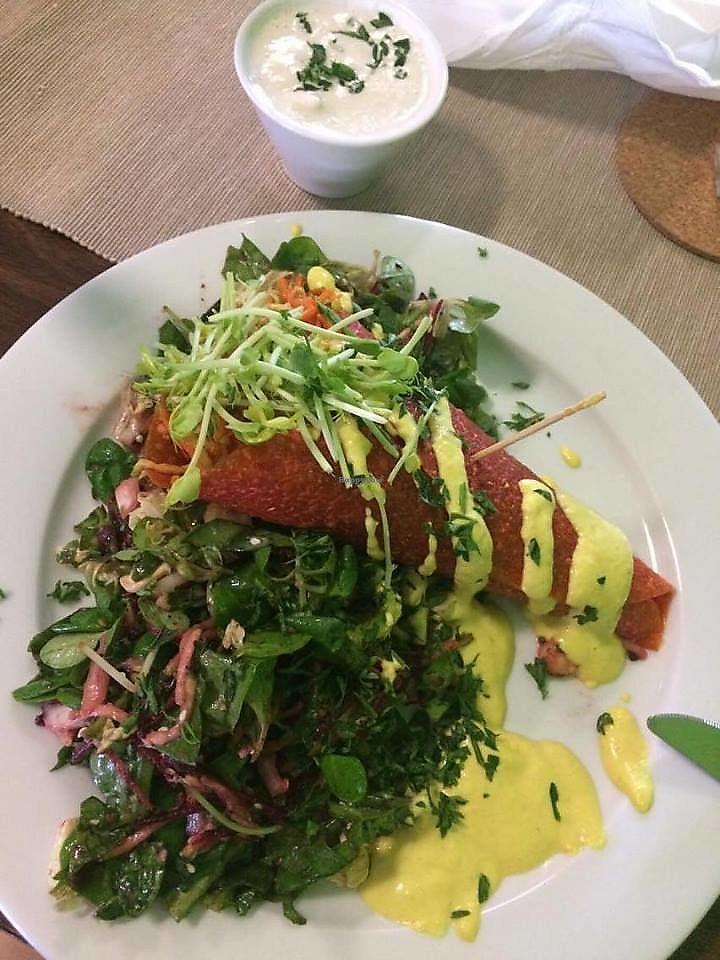 "Photo of Bemba  by <a href=""/members/profile/KorneliaSochanova"">KorneliaSochanova</a> <br/>raw wrap with chives dressing an fresh salad <br/> November 12, 2017  - <a href='/contact/abuse/image/30861/324727'>Report</a>"