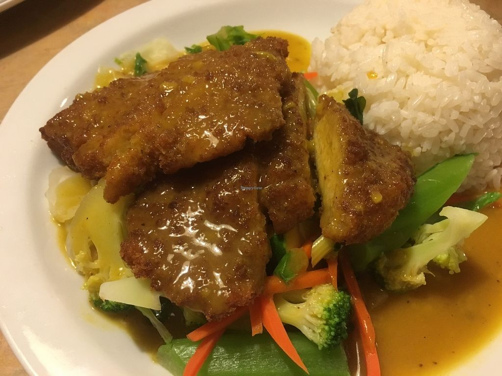 "Photo of Bodhi Tree Vegetarian Cafe  by <a href=""/members/profile/amymylove"">amymylove</a> <br/>Chicken Katsu <br/> December 11, 2015  - <a href='/contact/abuse/image/3101/127976'>Report</a>"