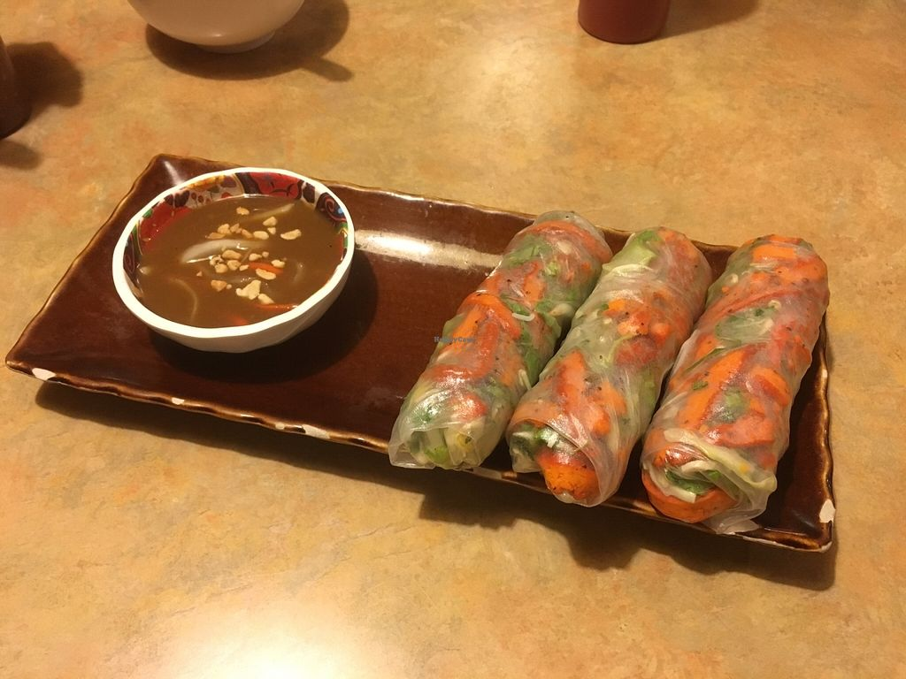 "Photo of Bodhi Tree Vegetarian Cafe  by <a href=""/members/profile/amymylove"">amymylove</a> <br/>Spring Rolls - These were ok, we thought we were ordering egg rolls to be fair, we like the fried stuff! <br/> December 11, 2015  - <a href='/contact/abuse/image/3101/127978'>Report</a>"