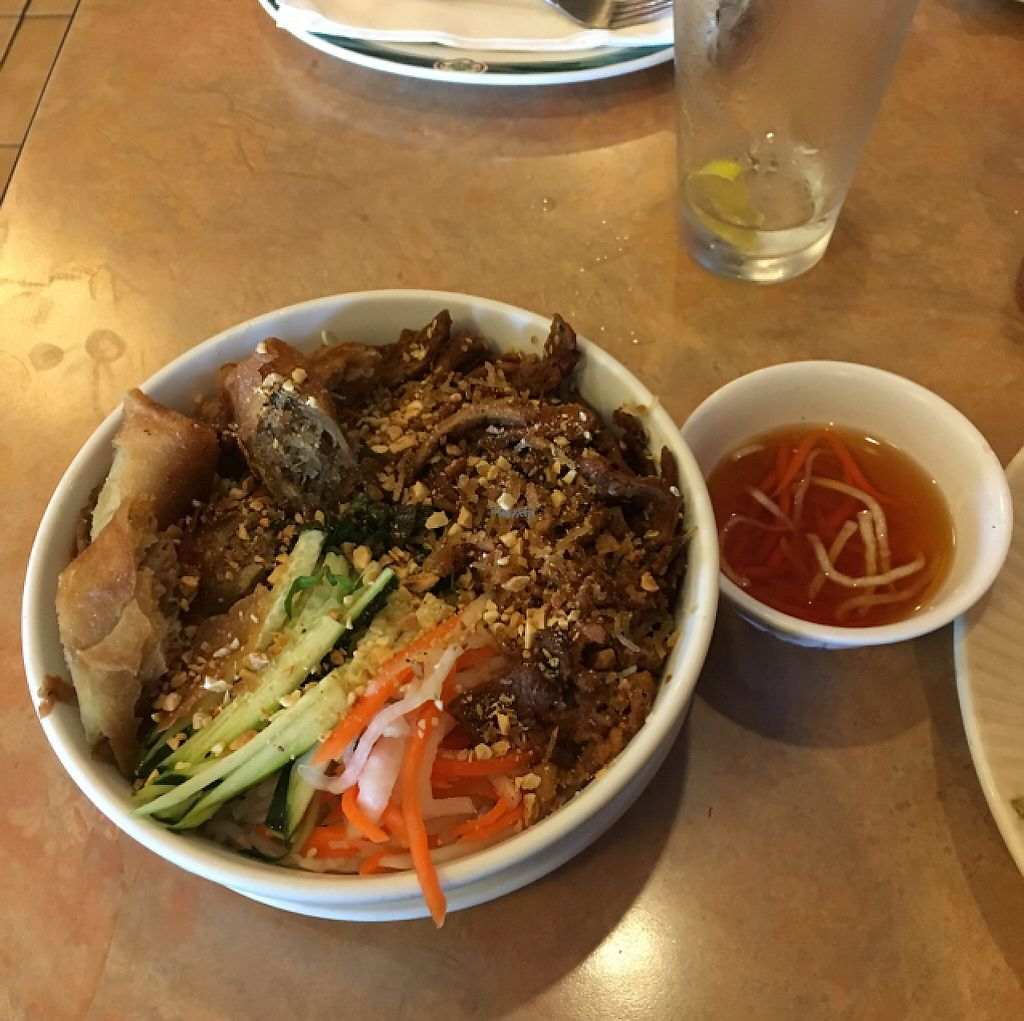 "Photo of Bodhi Tree Vegetarian Cafe  by <a href=""/members/profile/AllieGawreluk"">AllieGawreluk</a> <br/>bbq prok and eggroll vermicelli bowl! my #1 <br/> April 18, 2017  - <a href='/contact/abuse/image/3101/249521'>Report</a>"