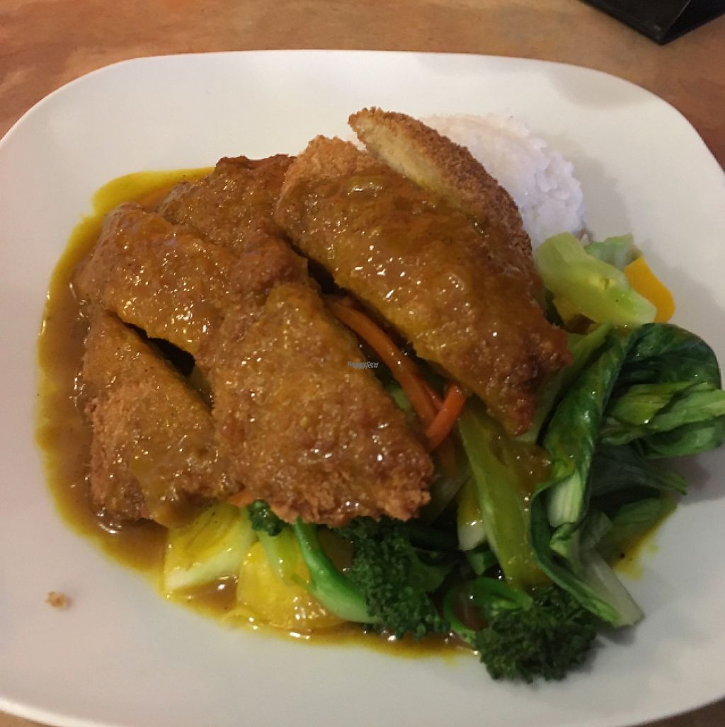 "Photo of Bodhi Tree Vegetarian Cafe  by <a href=""/members/profile/AllieGawreluk"">AllieGawreluk</a> <br/>chicken katsu ?? <br/> April 18, 2017  - <a href='/contact/abuse/image/3101/249522'>Report</a>"