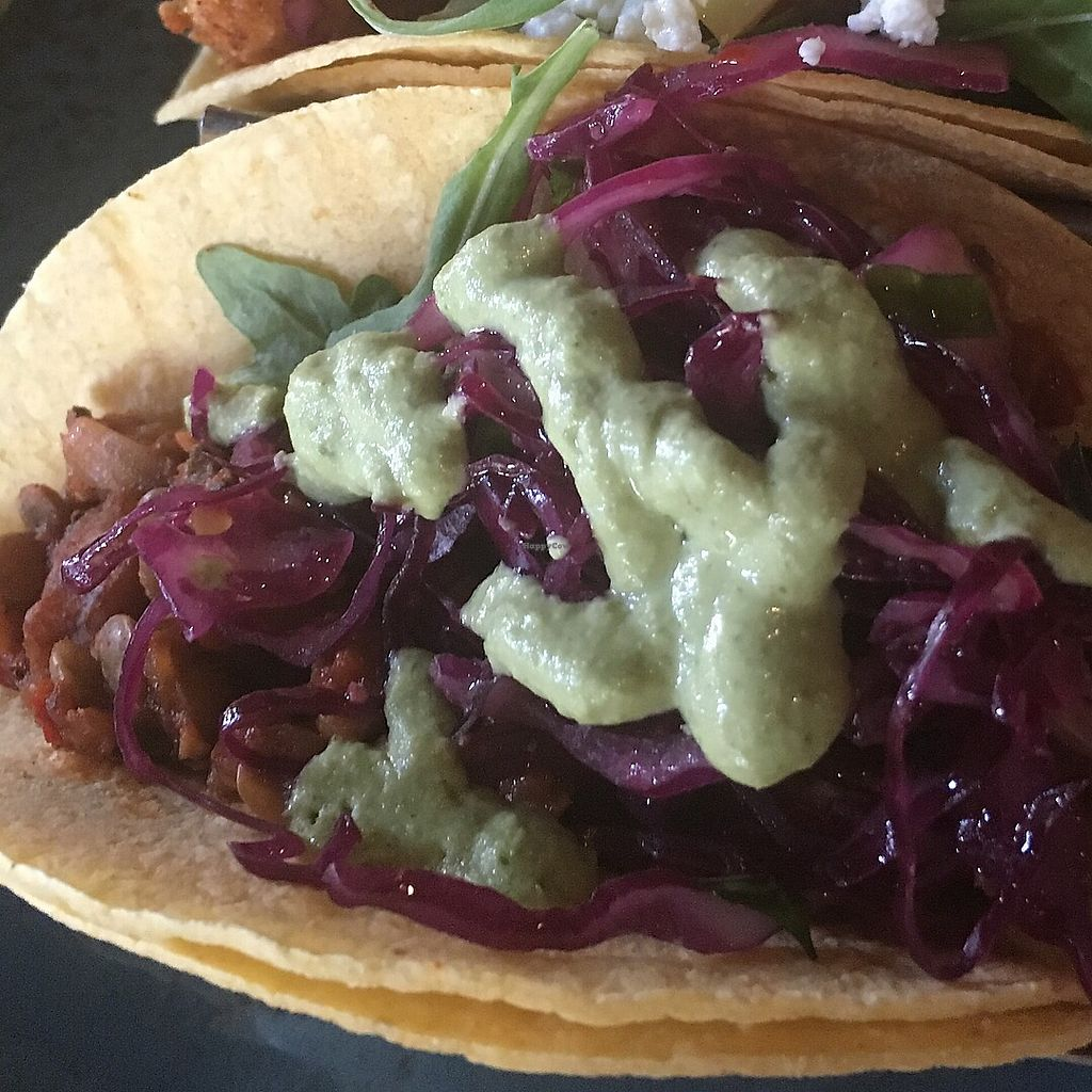 """Photo of Sunspot  by <a href=""""/members/profile/AlexandraPhillips"""">AlexandraPhillips</a> <br/>Vegan chorizo style lentil taco  <br/> May 8, 2018  - <a href='/contact/abuse/image/3103/396709'>Report</a>"""