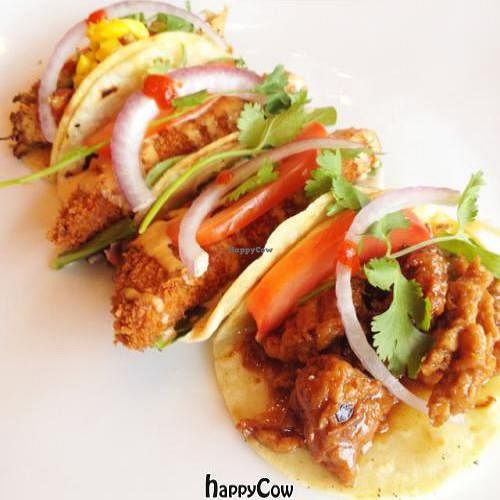 """Photo of Vege USA  by <a href=""""/members/profile/LVM"""">LVM</a> <br/>VegeUSA Bistro vegan tacos <br/> September 14, 2012  - <a href='/contact/abuse/image/31111/37863'>Report</a>"""