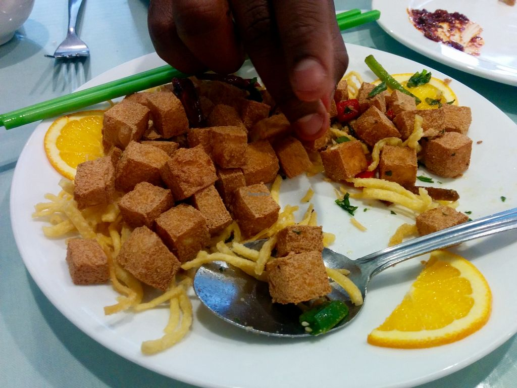 "Photo of Nature Vegetarian Restaurant  by <a href=""/members/profile/MizzB"">MizzB</a> <br/>Salt & pepper tofu appetizer, enough to share <br/> March 8, 2016  - <a href='/contact/abuse/image/31114/139276'>Report</a>"