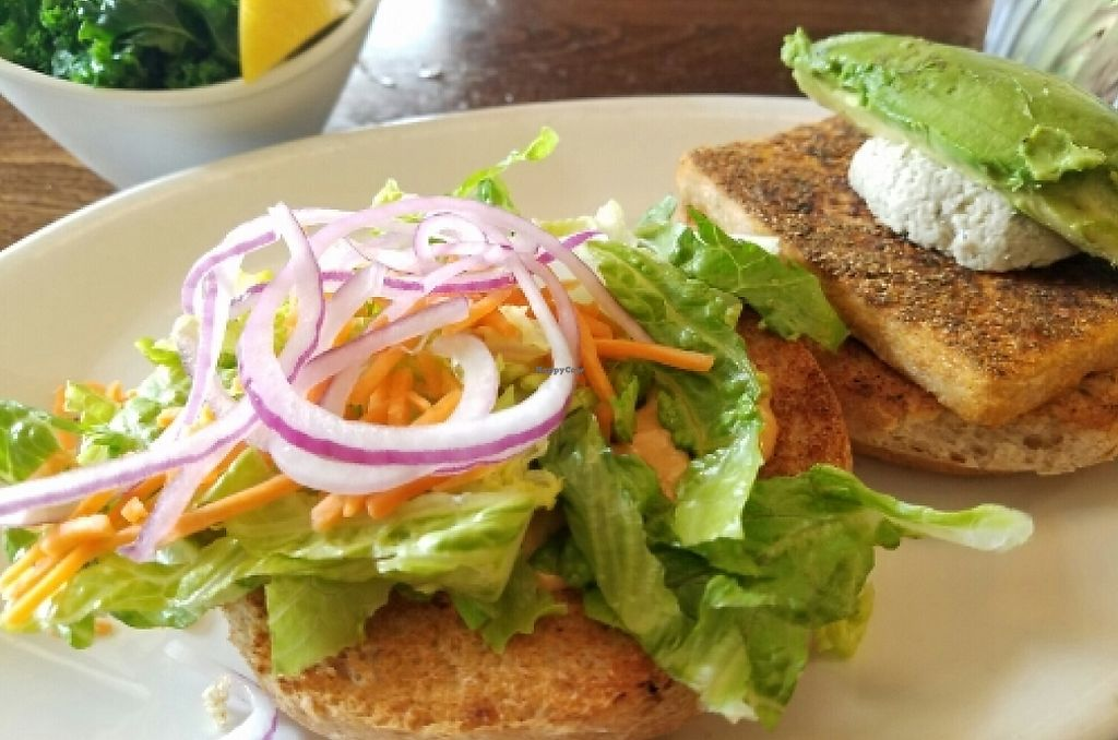"""Photo of Native Foods - Boulder  by <a href=""""/members/profile/EverydayTastiness"""">EverydayTastiness</a> <br/>Scorpion burger with a side of kale <br/> May 29, 2016  - <a href='/contact/abuse/image/31144/190827'>Report</a>"""