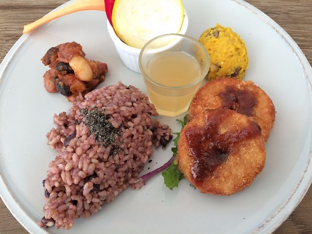 """Photo of Chaya Macrobiotics - Shiodome  by <a href=""""/members/profile/Taiki"""">Taiki</a> <br/>Today's deli plate <br/> February 16, 2017  - <a href='/contact/abuse/image/31179/227058'>Report</a>"""