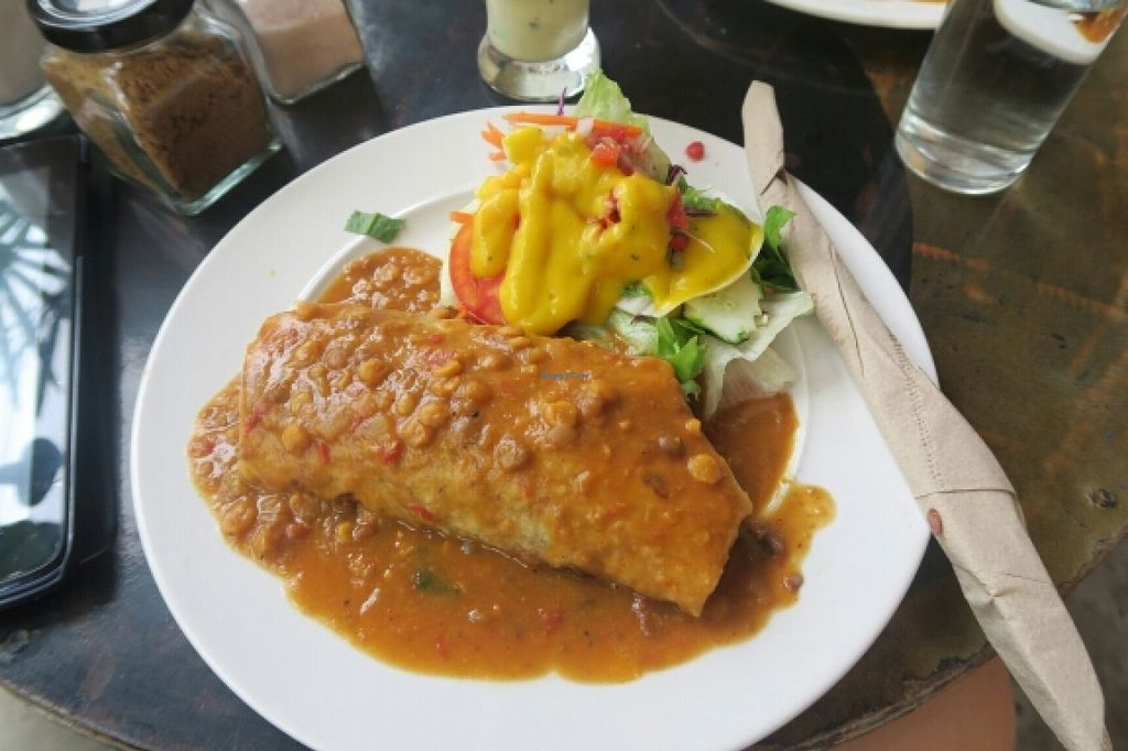 "Photo of Cat House Chiang Mai  by <a href=""/members/profile/freezer966"">freezer966</a> <br/>vegan Burrito <br/> March 28, 2016  - <a href='/contact/abuse/image/31314/141577'>Report</a>"