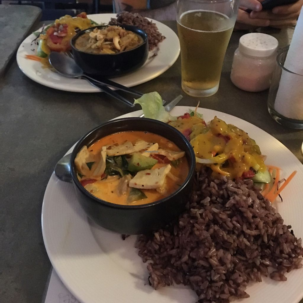 "Photo of Cat House Chiang Mai  by <a href=""/members/profile/dgravity"">dgravity</a> <br/>Red curry with a massive side of brown rice and salad <br/> June 6, 2017  - <a href='/contact/abuse/image/31314/266438'>Report</a>"
