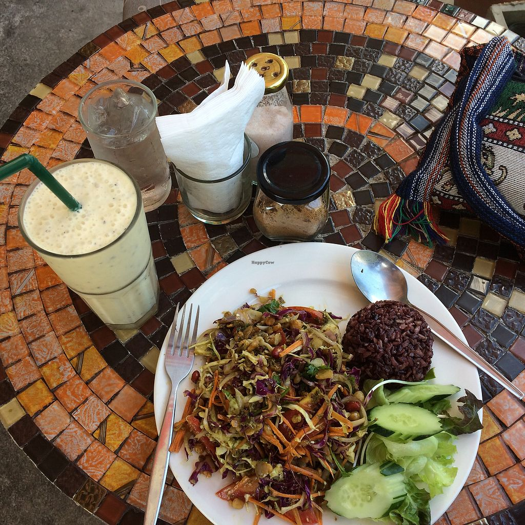 "Photo of Cat House Chiang Mai  by <a href=""/members/profile/evoontoast"">evoontoast</a> <br/>crazy hot Burmese salad and smoothie <br/> August 27, 2017  - <a href='/contact/abuse/image/31314/297727'>Report</a>"