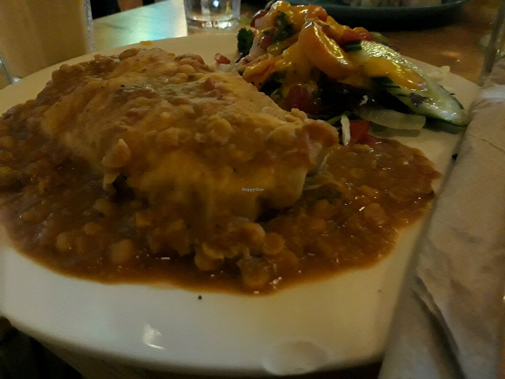 "Photo of Cat House Chiang Mai  by <a href=""/members/profile/LilacHippy"">LilacHippy</a> <br/>Lentil Curry Burrito <br/> April 21, 2018  - <a href='/contact/abuse/image/31314/388894'>Report</a>"
