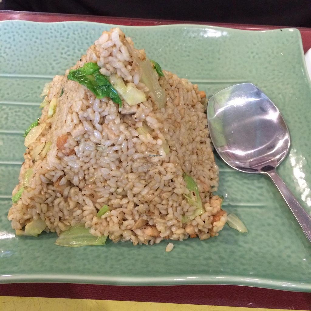 """Photo of Bodai Vegetarian  by <a href=""""/members/profile/Brok%20O.%20Lee"""">Brok O. Lee</a> <br/>Vegan Chicken Fried Rice <br/> November 13, 2014  - <a href='/contact/abuse/image/31350/85481'>Report</a>"""