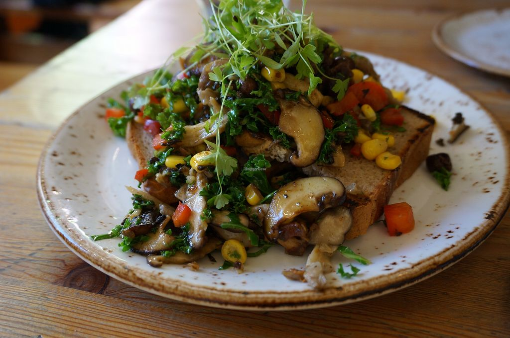 """Photo of Wild Food Cafe  by <a href=""""/members/profile/Ricardo"""">Ricardo</a> <br/>Wild Mushrooms on Toast <br/> September 25, 2017  - <a href='/contact/abuse/image/31440/308342'>Report</a>"""