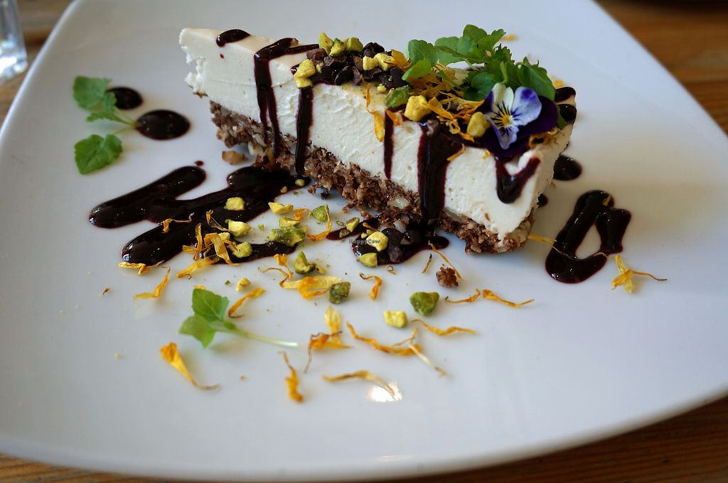 """Photo of Wild Food Cafe  by <a href=""""/members/profile/Ricardo"""">Ricardo</a> <br/>Cheesecake w/Blueberry sauce <br/> September 25, 2017  - <a href='/contact/abuse/image/31440/308346'>Report</a>"""