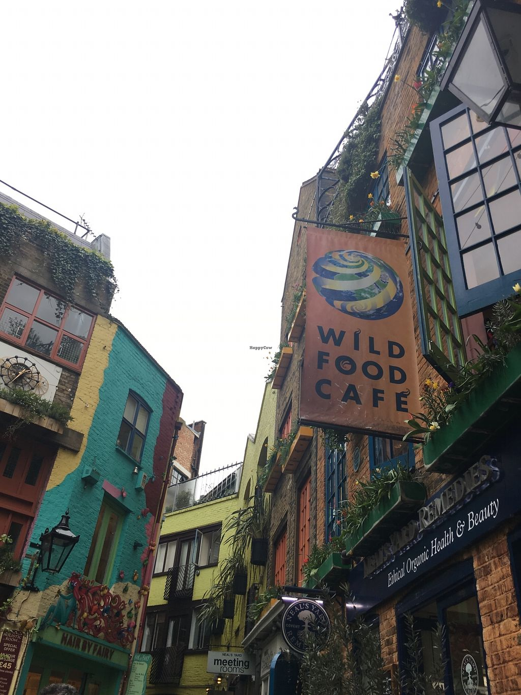 """Photo of Wild Food Cafe  by <a href=""""/members/profile/SkyFitzgerald"""">SkyFitzgerald</a> <br/>View of outside <br/> October 20, 2017  - <a href='/contact/abuse/image/31440/316969'>Report</a>"""