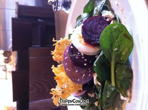 Photo of CLOSED: Ultimate Cafe  by mbalow <br/>Roasted Beet Salad <br/> April 21, 2012  - <a href='/contact/abuse/image/31448/30836'>Report</a>