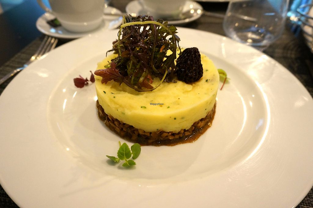 """Photo of Gentle Gourmet  by <a href=""""/members/profile/Ricardo"""">Ricardo</a> <br/>Tofu Parmentier (weekly menu) <br/> July 15, 2017  - <a href='/contact/abuse/image/31578/280720'>Report</a>"""