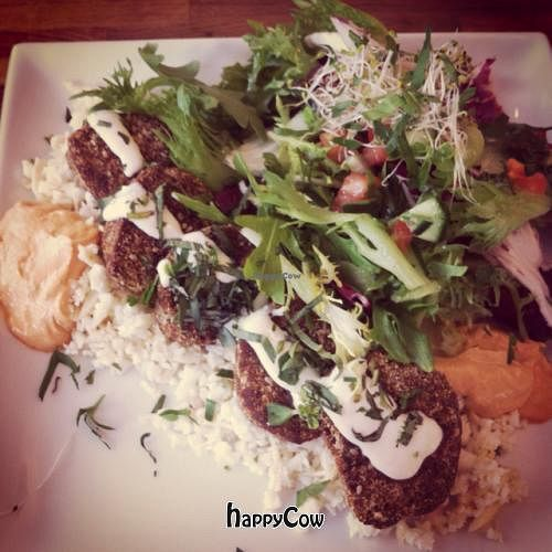 """Photo of Tilstede mat og mer  by <a href=""""/members/profile/PalHetland"""">PalHetland</a> <br/>Raw Vegan almond falafel with culiflower rice and some other stuff <br/> April 6, 2013  - <a href='/contact/abuse/image/31593/46564'>Report</a>"""
