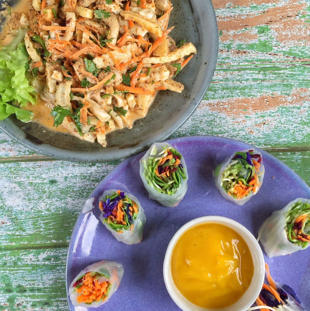 """Photo of Imm Aim Vegetarian and Bike Cafe  by <a href=""""/members/profile/lolacooks"""">lolacooks</a> <br/>banana blossom salad and fresh rolls <br/> August 16, 2016  - <a href='/contact/abuse/image/31687/169164'>Report</a>"""