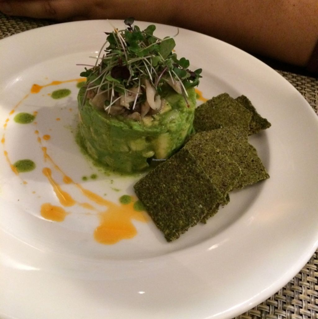 """Photo of Candle Cafe West  by <a href=""""/members/profile/MausEsel"""">MausEsel</a> <br/>avocado starter <br/> October 8, 2015  - <a href='/contact/abuse/image/31715/120638'>Report</a>"""