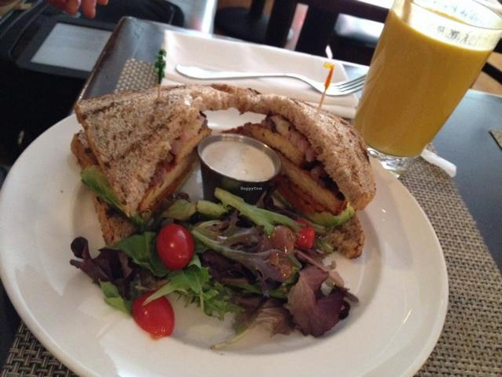 """Photo of Candle Cafe West  by <a href=""""/members/profile/MichaelBeasley"""">MichaelBeasley</a> <br/>BBQ tempeh sandwich and pumpkin chai smoothie <br/> March 31, 2014  - <a href='/contact/abuse/image/31715/66786'>Report</a>"""