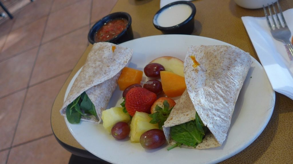 "Photo of Jason's Deli  by <a href=""/members/profile/SaraMarkic"">SaraMarkic</a> <br/>vegan wrap with salsa and fresh fruit, the other sauce is not vegan <br/> October 19, 2016  - <a href='/contact/abuse/image/31737/183024'>Report</a>"
