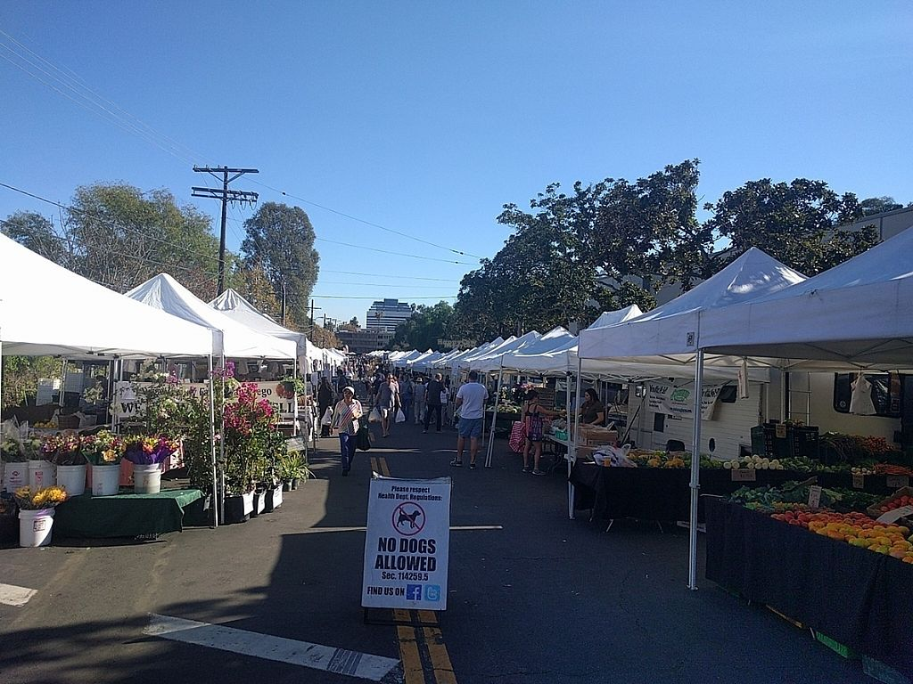 """Photo of Brentwood Farmers' Market  by <a href=""""/members/profile/MatthewVBogusz"""">MatthewVBogusz</a> <br/>View from the front <br/> November 15, 2016  - <a href='/contact/abuse/image/31938/190264'>Report</a>"""