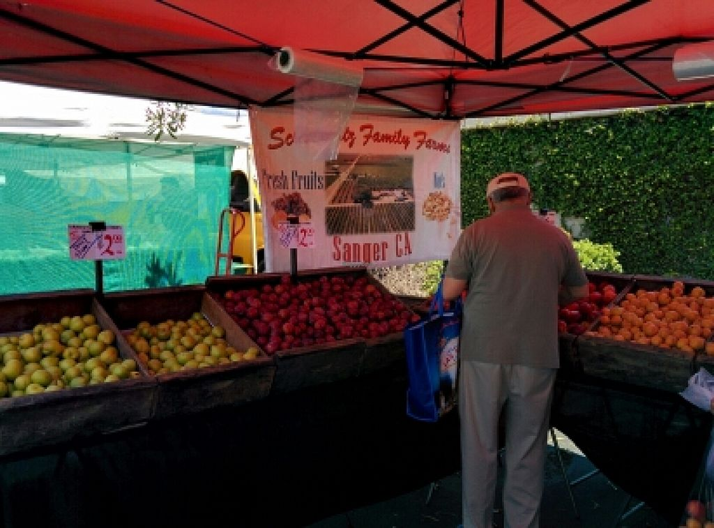 """Photo of Belmont Farmers' Market  by <a href=""""/members/profile/alexandra_vegan"""">alexandra_vegan</a> <br/>conventional <br/> June 15, 2016  - <a href='/contact/abuse/image/31963/153948'>Report</a>"""