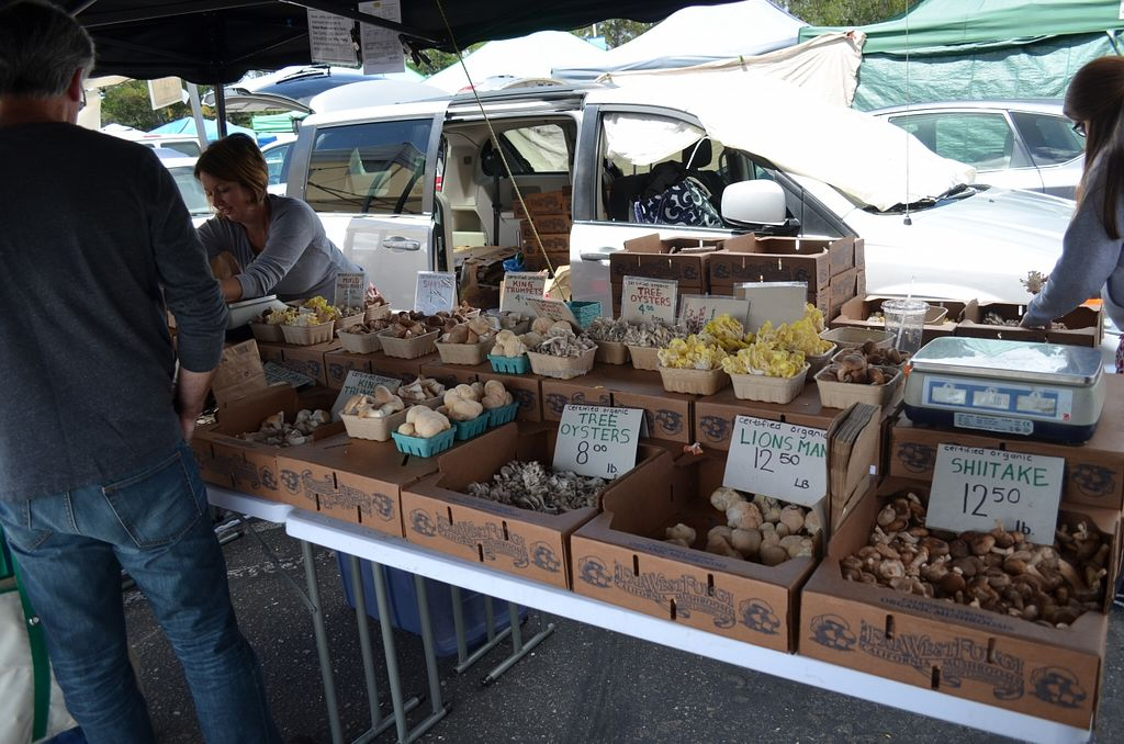 """Photo of College of San Mateo Farmers' Market  by <a href=""""/members/profile/alexandra_vegan"""">alexandra_vegan</a> <br/>April 2016 <br/> April 27, 2016  - <a href='/contact/abuse/image/31968/146495'>Report</a>"""