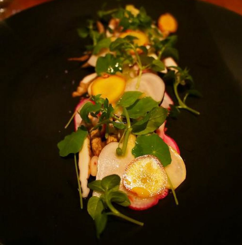 """Photo of CLOSED: Ethos  by <a href=""""/members/profile/sbszine"""">sbszine</a> <br/>Raw root vegetable salad -- some rare and obscure root! <br/> November 10, 2013  - <a href='/contact/abuse/image/32010/255698'>Report</a>"""