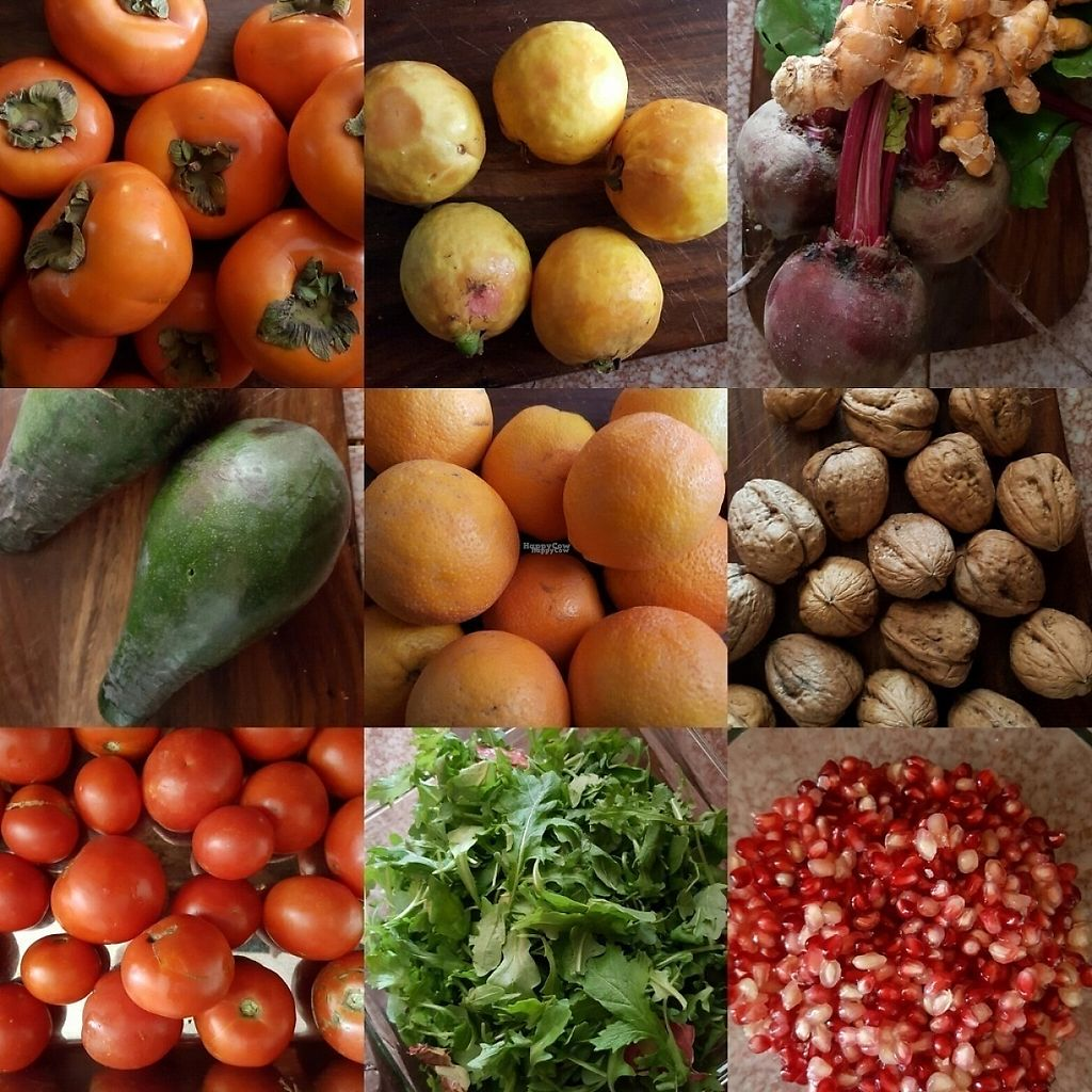 Photo of Farmer's Market - Larchmont Village  by rawlawgirl <br/>Larchmont Farmers Market Bounty <br/> November 29, 2016  - <a href='/contact/abuse/image/32044/195621'>Report</a>