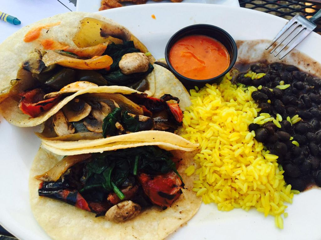 "Photo of Little Havana  by <a href=""/members/profile/Boriloca"">Boriloca</a> <br/>delicious veggie tacos sans cheese <br/> July 19, 2015  - <a href='/contact/abuse/image/32116/109932'>Report</a>"