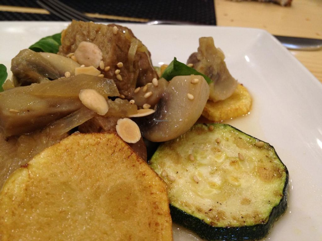 """Photo of El Curry Verde  by <a href=""""/members/profile/Duo"""">Duo</a> <br/>Guiso de seitan (vegan) <br/> February 9, 2014  - <a href='/contact/abuse/image/32316/64025'>Report</a>"""