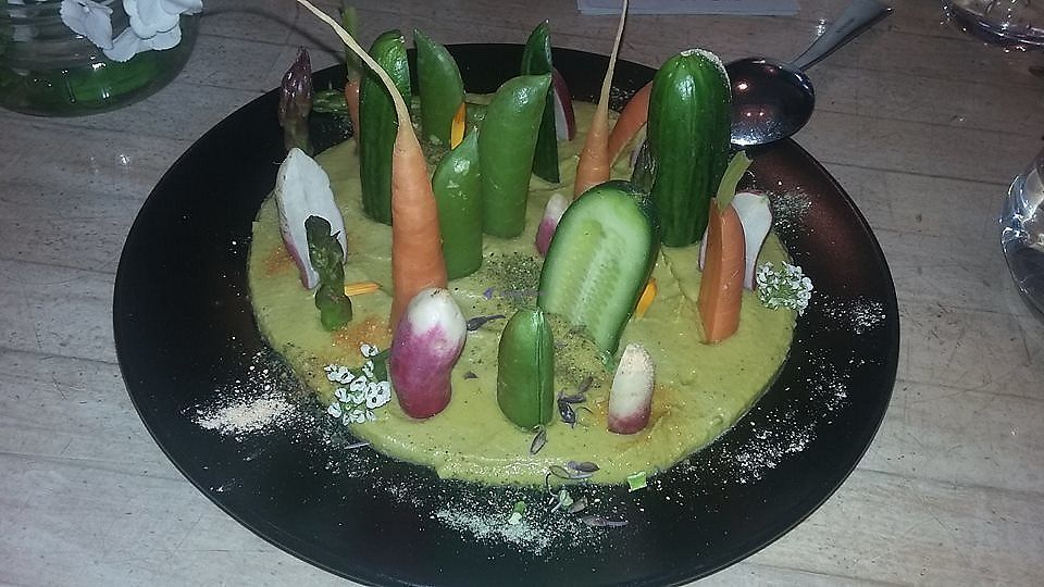 """Photo of The Acorn  by <a href=""""/members/profile/alicus"""">alicus</a> <br/>Forest Floor - Coriander Raw Hummus with Picked and Raw Veggies <br/> July 10, 2017  - <a href='/contact/abuse/image/32348/278523'>Report</a>"""
