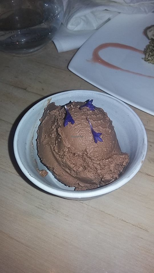 """Photo of The Acorn  by <a href=""""/members/profile/alicus"""">alicus</a> <br/>Vegan Chocolate Ice Cream <br/> July 10, 2017  - <a href='/contact/abuse/image/32348/278525'>Report</a>"""