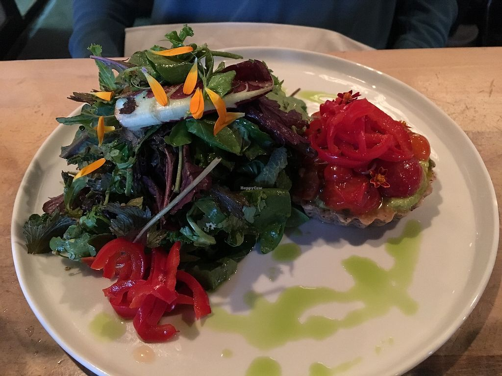 """Photo of The Acorn  by <a href=""""/members/profile/vegan%20frog"""">vegan frog</a> <br/>Raw cheese tart <br/> October 13, 2017  - <a href='/contact/abuse/image/32348/314716'>Report</a>"""