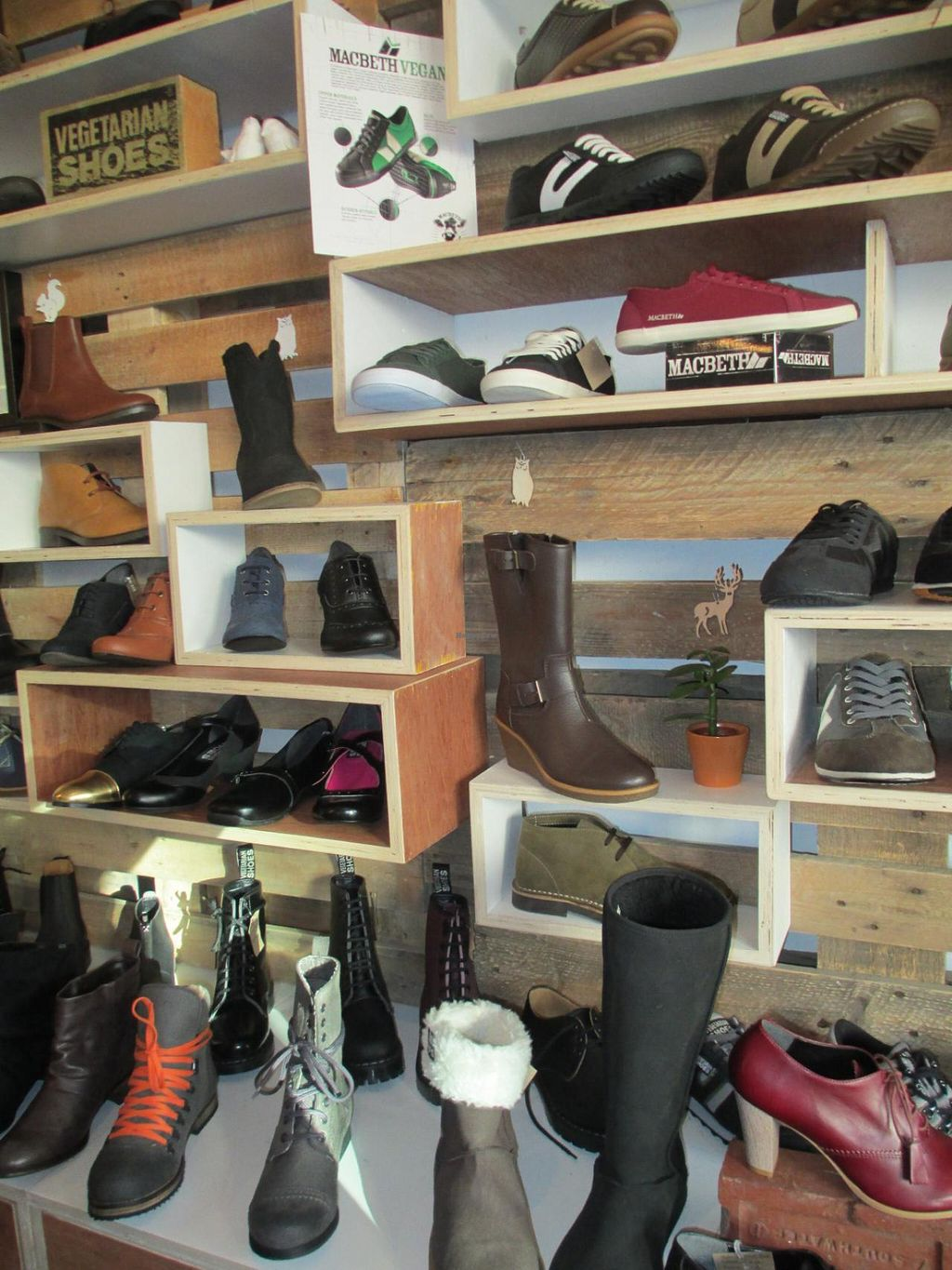 """Photo of The Third Estate  by <a href=""""/members/profile/Joyatri"""">Joyatri</a> <br/>Shoe selection <br/> January 1, 2014  - <a href='/contact/abuse/image/32401/61506'>Report</a>"""