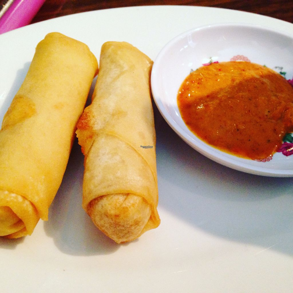 "Photo of Green Sprout  by <a href=""/members/profile/calamaestra"">calamaestra</a> <br/>curry spring rolls <br/> August 8, 2016  - <a href='/contact/abuse/image/3248/166959'>Report</a>"