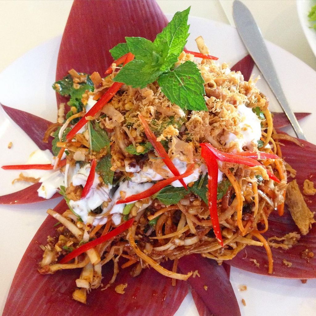 """Photo of Green Palace Thai Vegetarian  by <a href=""""/members/profile/MOJO%21"""">MOJO!</a> <br/>Banana Blossom Salad  <br/> January 24, 2015  - <a href='/contact/abuse/image/32508/91335'>Report</a>"""